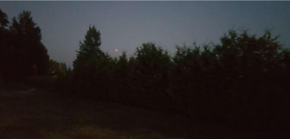 månbild